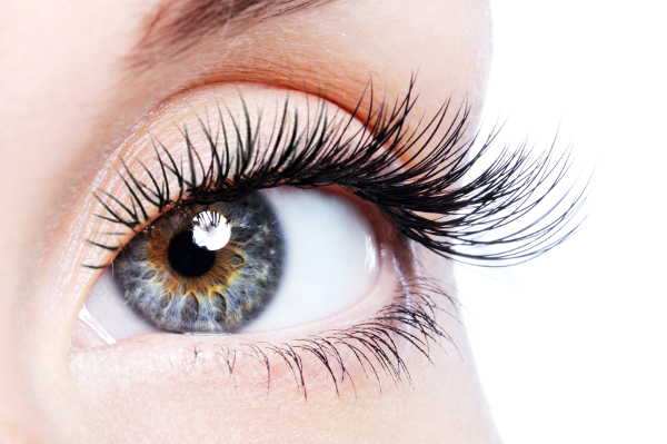 EYE-LASH EXTENSION SERVICES